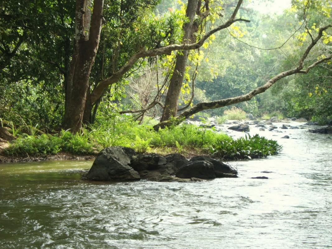 siddeshwara-wayanad